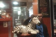 Zebre2